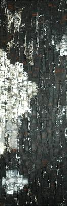 Ecorces terre d'ombre naturelle